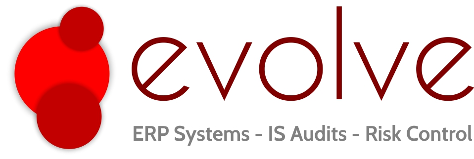 Evolve Africa - ERP Systems - IS Audits - Risk Control
